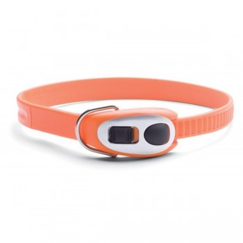 Cinch-it Collar /Orange/