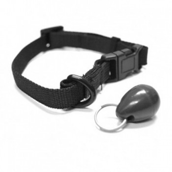 PetSafe Staywell 480 Magnetic Collar Key