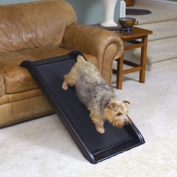Mini Dog ramp