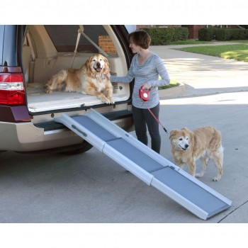 PetSafe Happy Ride™ Pet Ramp