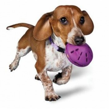 Twist n' Treat™ (S) Refillable dog chew toy