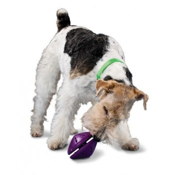 Twist n' Treat™ (L) Refillable dog chew toy