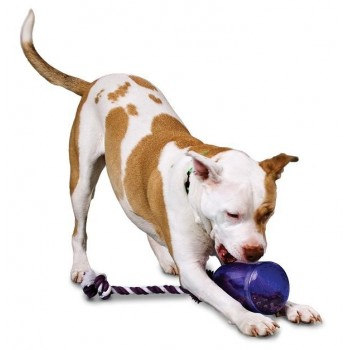 Tug-a-Jug™  (M/L) Refillable dog chew toy