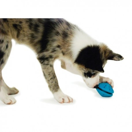 Premier® Puppy Twist n' Treat™ (S) Refillable dog chew toy