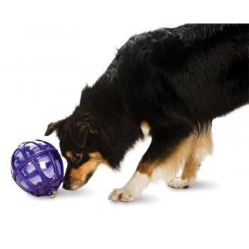 Kibble Nibble™  (M/L) Dog Activity Ball