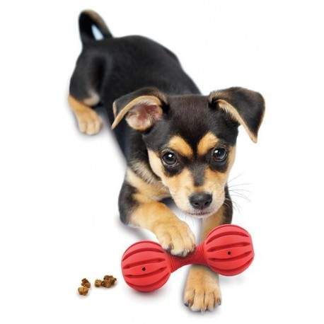 Premier® Waggle™ (XS) - Puppy Treat dispensing toy