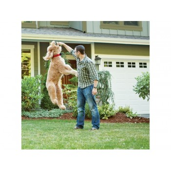 PetSafe Premium Wireless Fence PIF-300-21